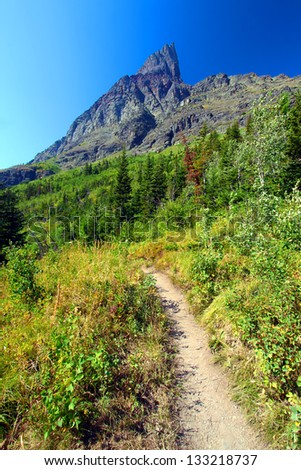 Hiking trail in the Many Glacier area of Glacier National Park