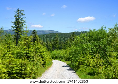 Hiking trail in the National park Bayerischer Wald, Germany. Stock foto ©