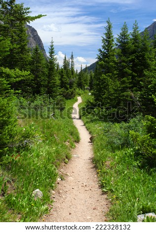 Hiking trail in the wilderness #222328132