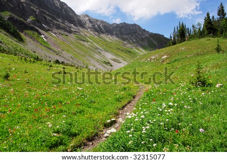 Hiking trail on the top of mountain indefatigable, kananaskis country, alberta, canada