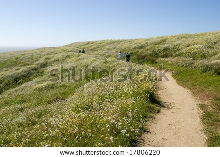 Hiking with flowers by the sea