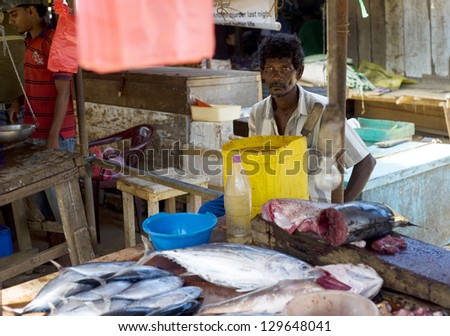 HIKKADUWA, SRI LANKA - JANUARY 23: Seller at a fish market on January 23, 2011 in Hikkaduwa, Sri Lanka. Fish market is the component of traditional Sri Lankan culture.