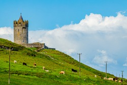 Hill in a field with green grass, cattle grazing with the tower of Doonagore castle in the background, sunny spring day in the coastal town of Doolin in County Clare in Ireland. Wild Atlantic Way