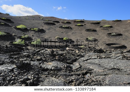 hill-side of volcano at Timanfaya National Park, Lanzarote Island, Canary Islands, Spain