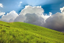 Hills covered with green grass and blue sky with white puffy clouds