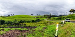 Hills Grasslands Ambewela Farm Nuwara Eliya Sri Lanka