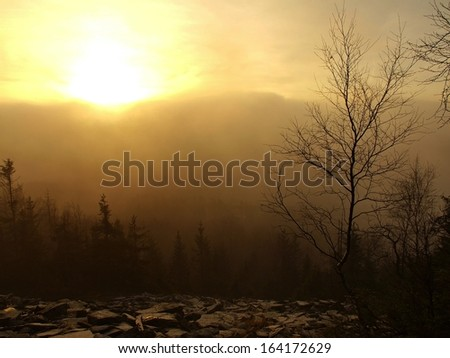 Hills increased from daybreak autumn foggy background. First sun rays. The sun rays colored mist to orange and yellow.