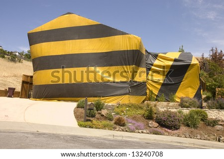 hillside home covered in tent material to be fumigated for termite eradication