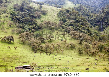 Hillsides  in the Amazonian foothills of the Andes in Ecuador deforested for cattle pasture