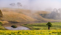 Hilly countryside and farmland covered in fog in the Upper Hunter Region of NS W, Australia. A 13 image stitch.