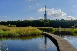 Hilversum nature reserve and transmitter mast. Board walk crossing a lake with clear reflections.