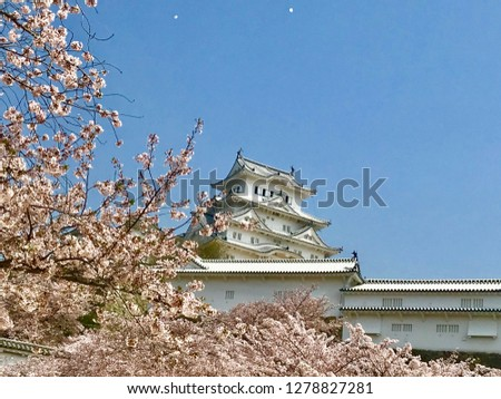 Himeji Castle during Spring time with Cherry blossom in foreground. Himeji Castle is one of the most famous castles in Japan. It is also called White Heron Castle.