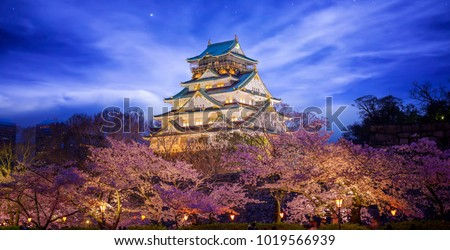 Himeji Castle in Osaka with full bloom of Sakura in Japan at night, this immage can use for travel concept for Asia, japan, kyoto and Osaka