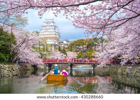 Himeji Castle with beautiful cherry blossom in spring season. - Shutterstock ID 430288660