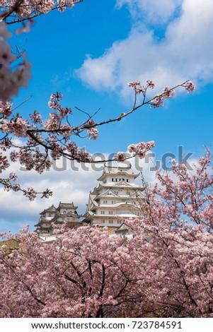 himeji castle with sakura ストックフォト ©