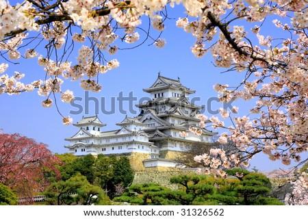 stock-photo-himeji-jo-castle-in-spring-cherry-blossoms-31326562.jpg