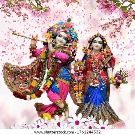 stock photo hindu god radha krishna iskcon temple with nice dressup and rose petals background wallpaper design 1761244532