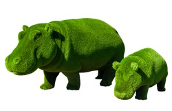 Hippos mom and cub. Topiary. Hippos made of artificial grass isolated on white background. Landscaping.