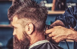 Hipster client getting haircut. Hands of barber with hair clipper, close up. Haircut concept. Hipster client getting haircut. Man visiting hairstylist in barbershop. Barber works with hair clipper.