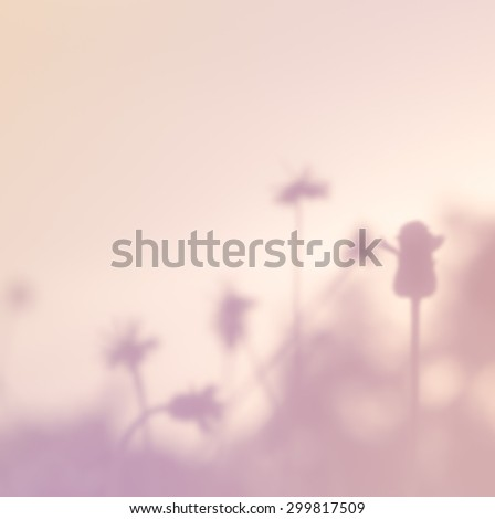 Free Photos Hipster Style Grass Blurred With Filters For Background