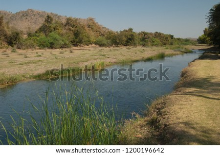 Hiran river. Sasan Gir. Gujarat. India.