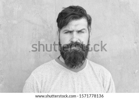 His beard and a haircut are styled. Bearded man wearing stylish mustache and beard shape. Unshaven hipster with textured beard hair on grey wall. Serious caucasian guy with long beard.
