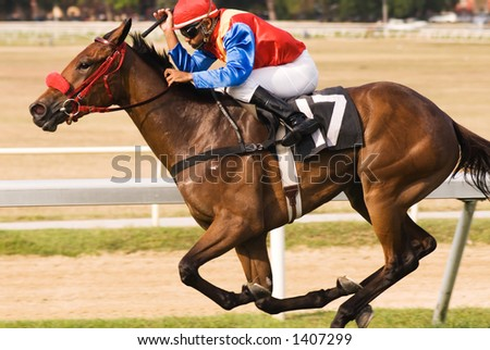 His jockey crouched down over his neck, a thoroughbred racer takes the corner at breakneck speed towards the finish line.