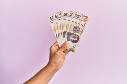 Hispanic hand holding 500 mexican pesos  banknotes over isolated pink background.