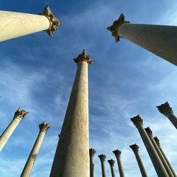 Historic columns of the Capitol at the National Arboretum