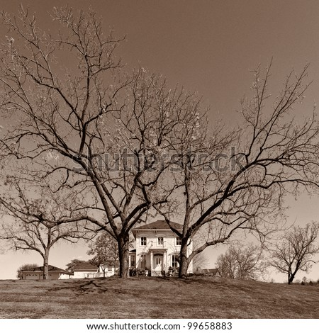 Historic farmhouse with tall, bare trees in rural Illinois