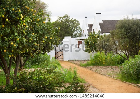 Historic typical Old Dutch colonial farms and house in the streets of a rural city surrounded with many vineyards