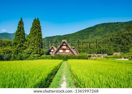 Historic Villages of Shirakawa-g and Gokayama, Shirakawa-mura, Gifu-ken, Japan, Asia, Eastern Asia #1365997268