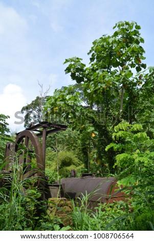 historic water wheel in Tobago #1008706564