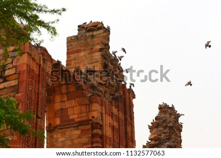 Historical Place : Qutub Minar, Delhi, India #1132577063