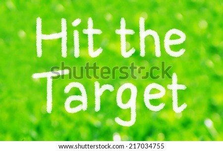 Hit the Target. Motivational Concept written on a green background