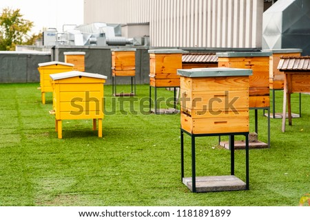 Hives in apiary on the roof of modern building in the downtown Сток-фото ©