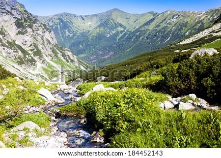 Hlinska Valley, Vysoke Tatry (High Tatras), Slovakia Stockfoto ©