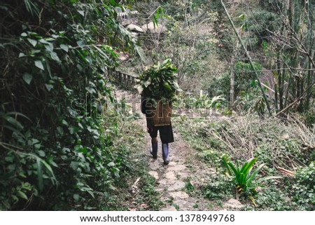 Hmong women is carrying blanket on the way home at SAPA, Northern Vietnam. North Vietnamese woman carries a basket with leaves behind. #1378949768
