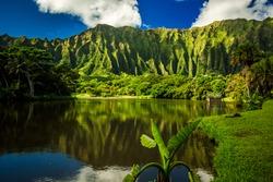 Ho'omaluhia Botanical Garden in Kaneohe, Oahu, Hawaii