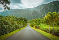 Ho'omaluhia Botanical Park at Oahu Island in Hawaii, United States.