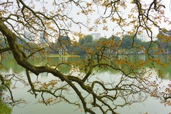 Hoan Kiem lake in Hanoi capital with Turtle Tower - the symbol of Vietnam. Focus on the branches of tree