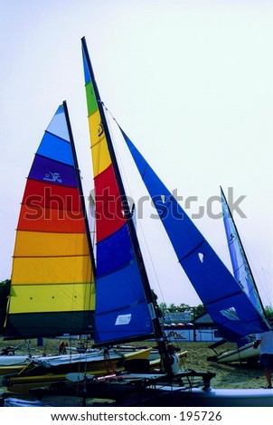 hobie cat sails taken at beach where races were being held.