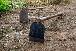 Hoe iron on the ground gardening for agricultural and horticultural hand tool used to shape soil, remove weeds, clear soil, and harvest root crops.