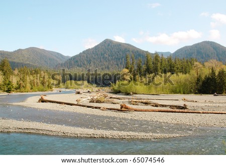 Hoh River and Olympic Mountains