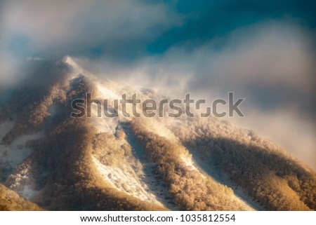 Hokkaido, Japan snow scenery #1035812554