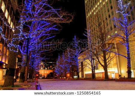 Hokkaido, Sapporo city, December 2, 2018, Sapporo Kita 3-jo Hiroba [akapura] venue Title, akapura illumination, It is the oldest street tree in Hokkaido, directing ginkgo trees in light. #1250854165