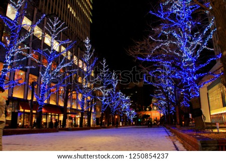 Hokkaido, Sapporo city, December 2, 2018, Sapporo Kita 3-jo Hiroba [akapura] venue Title, akapura illumination, It is the oldest street tree in Hokkaido, directing ginkgo trees in light. #1250854237