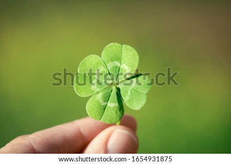 Holding a lucky four leaf clover. Сток-фото ©