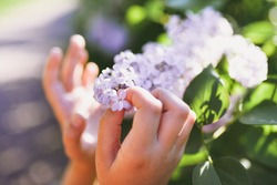 Holding the lucky five petals lilac flower