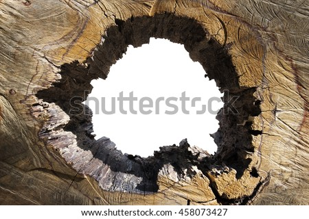 holes wood, can be used as a background, Earth Day, Protect the environment #458073427
